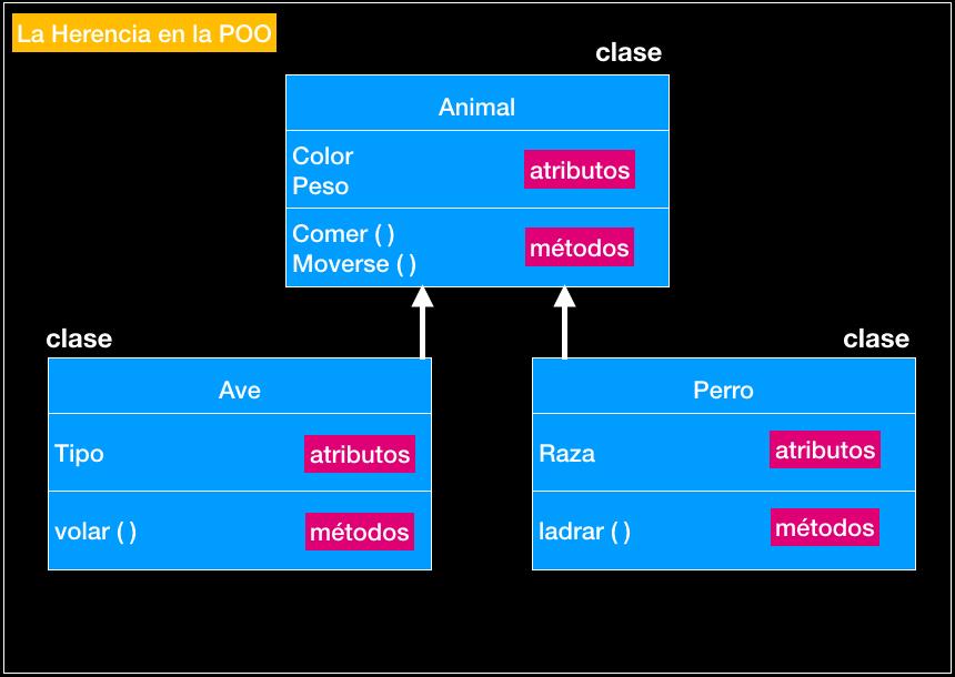 La Herencia Ocio Las Palmas Programacion Orientada a Objeto